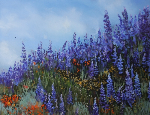 Color Me Purple Lupine