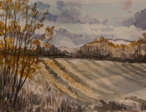 Lehi Field in November II
