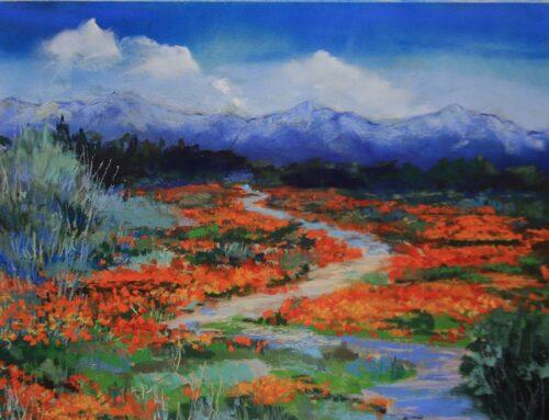 California Poppy Extavangaza